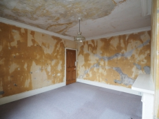 Wallpaper Stripping, Plaster, Decorating, Beckenham